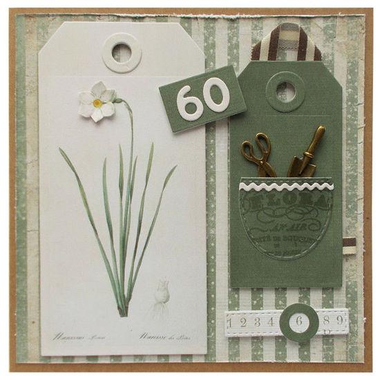 Obrázek Přáníčko k 60. narozeninám Narcis