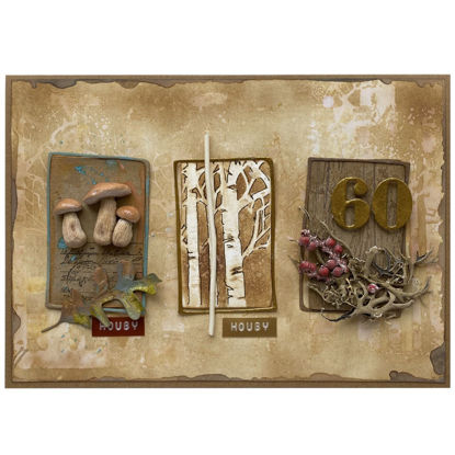 Obrázek Přání k 60. narozeninám Houbař