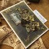 Obrázek Přáníčko do obálky Nejlepší