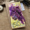 Přáníčko s fialovými růžemi s motýlkem