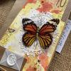 Obrázek Přání k 70. narozeninám S křídly
