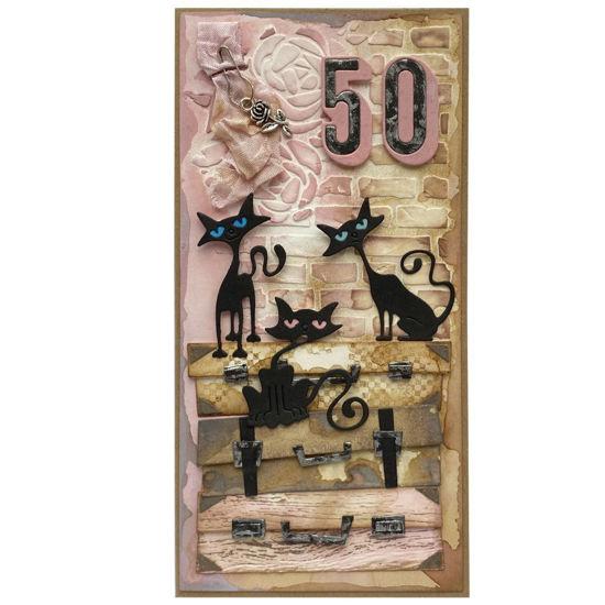 Obrázek Přání k 50. narozeninám Kočičí máma