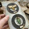 Obrázek Přáníčko do obálky Sbírka brouků